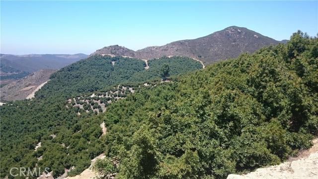 0 Pauma Ridge Road, Pala CA: http://media.crmls.org/medias/4644507d-0f3e-4ff4-9721-d2e5a43da6a5.jpg