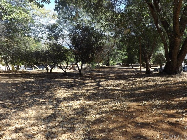 Additional photo for property listing at 2445 Eastlake Drive  Kelseyville, California 95451 United States