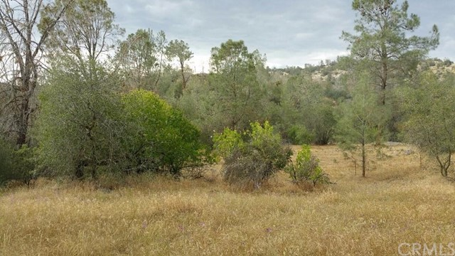 Single Family for Sale at 0 Limestone Circle Coarsegold, California 93614 United States