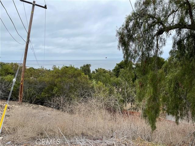30 Peppertree Drive, Rancho Palos Verdes CA: http://media.crmls.org/medias/46c27cf4-9b79-47e4-a5e0-48e76d8fc6f9.jpg