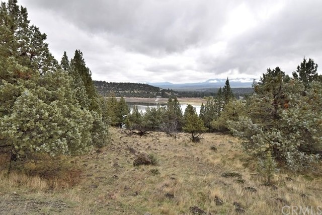 Single Family for Sale at 0 Lot 323 Shoreline Drive Weed, California 96094 United States
