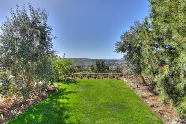 5 Columnar Street Ladera Ranch, CA 92694 - MLS #: OC17075215
