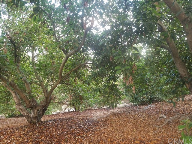 0 Sandia Creek Dr, Temecula, CA  Photo 40