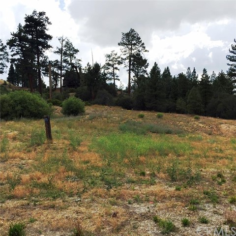 Additional photo for property listing at 0 Paine Road  Big Bear, California 92315 United States