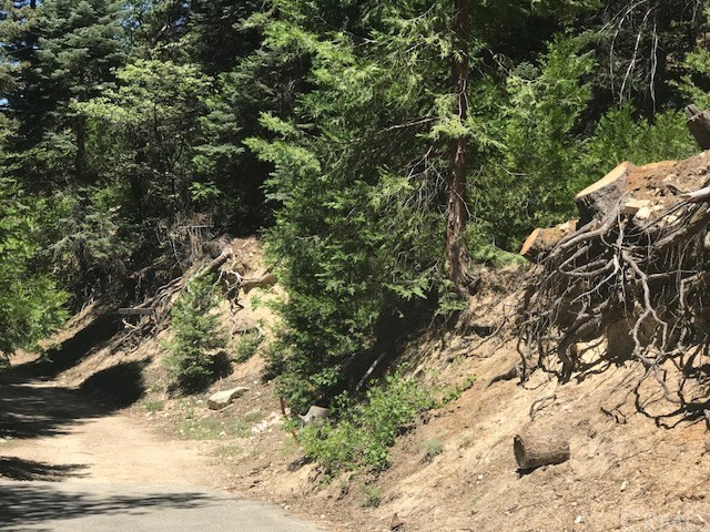 521 Hillside Drive, Lake Arrowhead CA: http://media.crmls.org/medias/487debfa-023b-4d48-9cb8-9ee67ac023ee.jpg