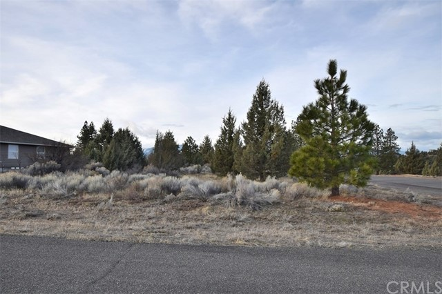 Single Family for Sale at 0 Lot 173 Corner Of Pinehill Rd. & Sherwood Pl. Weed, California 96094 United States