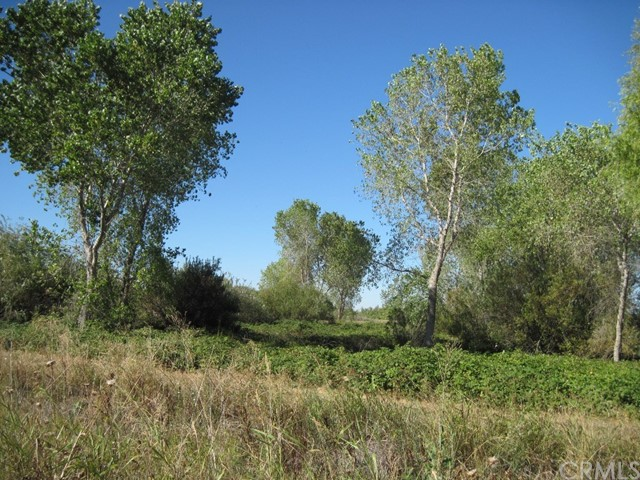 Land for Sale at 0 7 Mile Lane & Nelson Durham, California United States