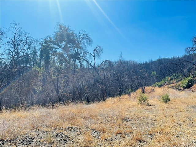 12657 Elk Mountain Road, Upper Lake CA: http://media.crmls.org/medias/49ed9686-14f4-4c2b-9def-ca4c0a0cbf6e.jpg