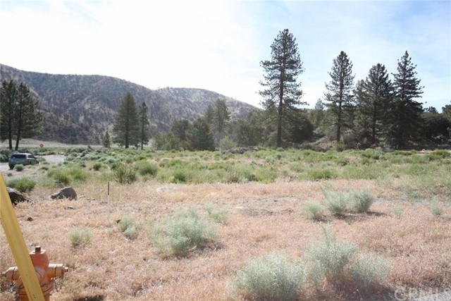 5555 Pacific Crest Drive Wrightwood, CA 92397 - MLS #: IV17164138