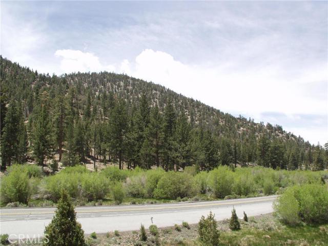 土地 为 销售 在 1000 38 Highway Angelus Oaks, 加利福尼亚州 美国