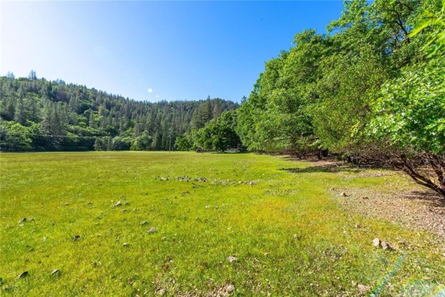 12655 Black Oak Road Loch Lomond, CA 95461 - MLS #: LC18135512