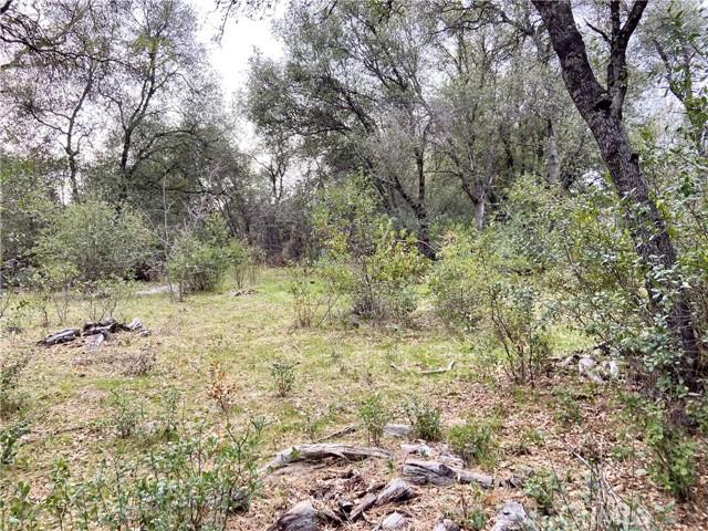 4907 Stumpfield Mountain Road, Mariposa CA: http://media.crmls.org/medias/4d46f2f0-105e-417f-8d18-b8f8cf0080d8.jpg