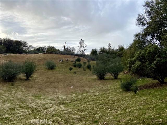 4907 Stumpfield Mountain Road, Mariposa CA: http://media.crmls.org/medias/4dd3ab96-a687-4203-a5a0-d81f360ec931.jpg