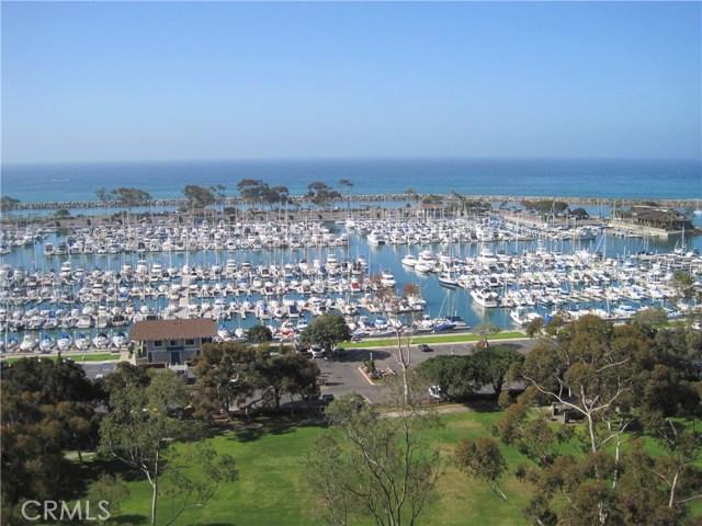 33565 Sea Gull Court Dana Point, CA 92629
