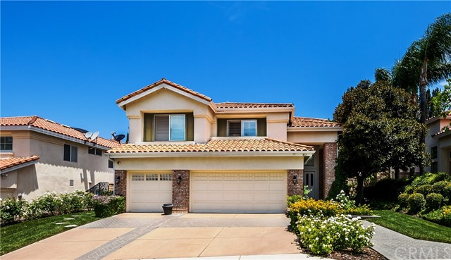 Single Family Home for Rent at 872 Briar Rose Lane S Anaheim Hills, California 92808 United States