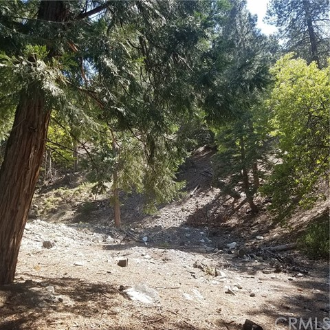 0 Summit Drive Forest Falls, CA 92339 - MLS #: EV18115548