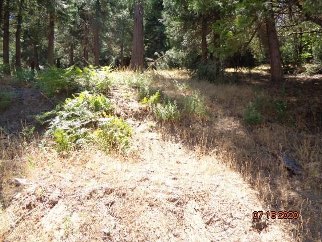 0 Mozundar Drive, Cedarpines Park CA: http://media.crmls.org/medias/4eee5f3d-4c8a-493d-a3bb-052ceef49971.jpg