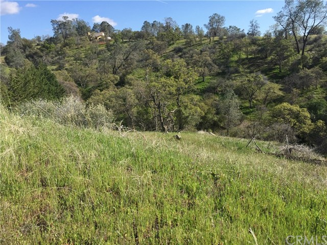 0 Lilley Mountain Drive Coarsegold, CA 93614 - MLS #: FR18068474