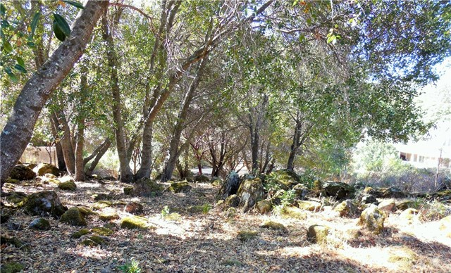 10631 Edgewater Dr, Kelseyville, CA, 95451