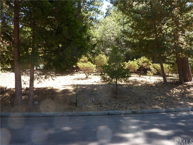 0 Sugar Pines Circle, Angelus Oaks CA: http://media.crmls.org/medias/4f41a0e6-d70b-488b-94cb-6e97116d3f80.jpg