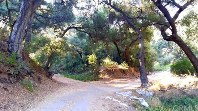 Land for Sale at Palmer Canyon Road Claremont, United States