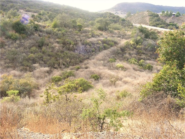 24755 Rancho California Road, Temecula CA: http://media.crmls.org/medias/50e438f5-571c-400b-9ff5-80f0322b9e57.jpg