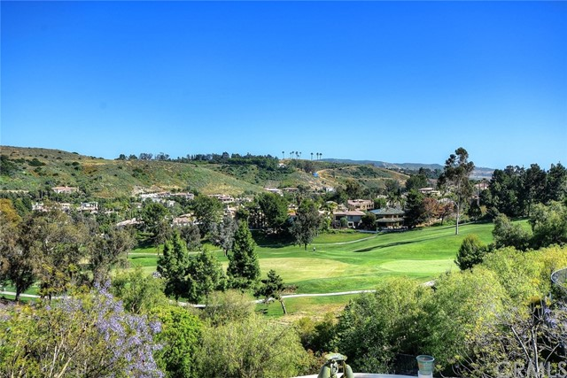 27312 Viewpoint Circle San Juan Capistrano, CA 92675 - MLS #: OC17113330