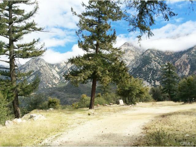 0 Glendora Ridge Rd, Mt Baldy CA: http://media.crmls.org/medias/517b0812-b2b7-4c77-8b3f-2f237940a6ff.jpg