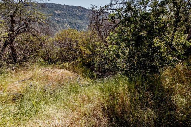 4830 Hwy 49 S, Mariposa CA: http://media.crmls.org/medias/51c11593-fb9f-4484-93e3-77f06ad9d576.jpg