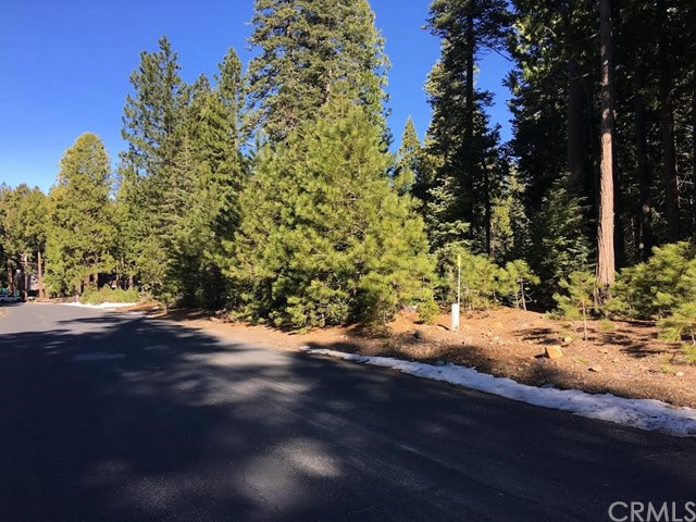 Land for Sale at 18 Biggers Glen Sub Butte Meadows, California 95942 United States