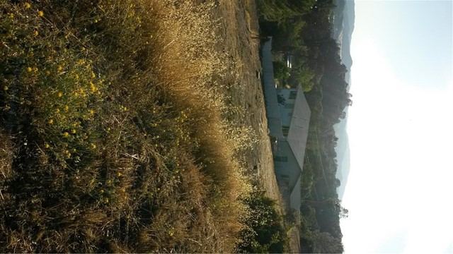 Single Family for Sale at 9995 Emerald Drive Kelseyville, California 95451 United States