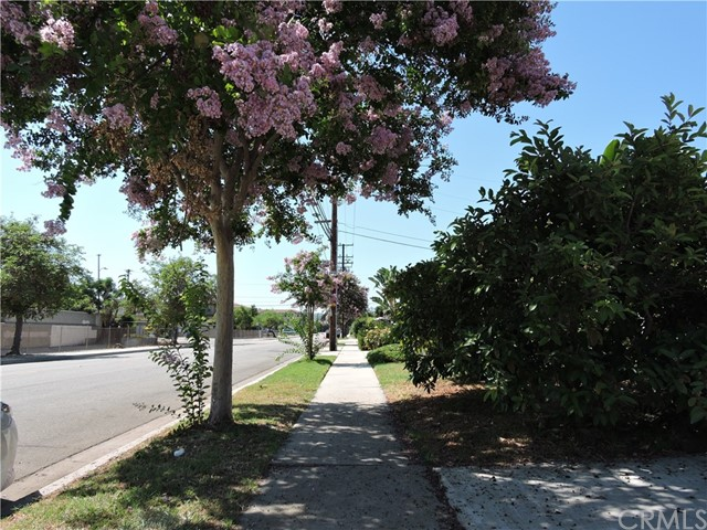 217 Pierre Road, Walnut CA: http://media.crmls.org/medias/5341165a-5af5-46e6-9715-0cdf28556d53.jpg