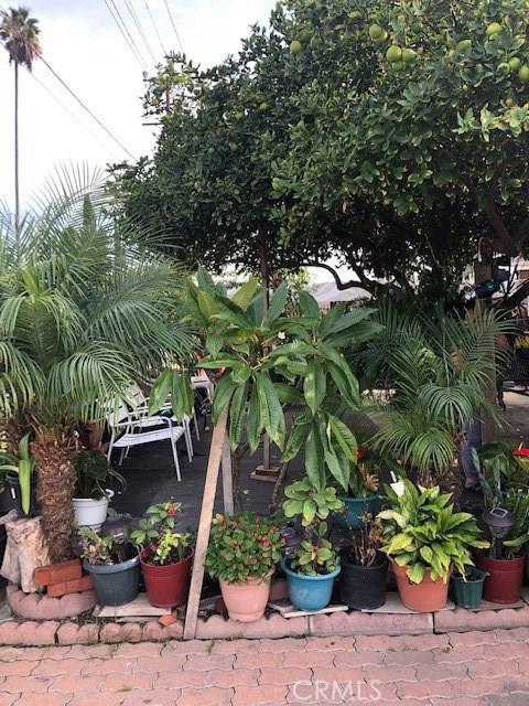 400 E 59th Place, Los Angeles CA: http://media.crmls.org/medias/5356b4f8-3e52-47d6-8ac0-715e653bd4aa.jpg