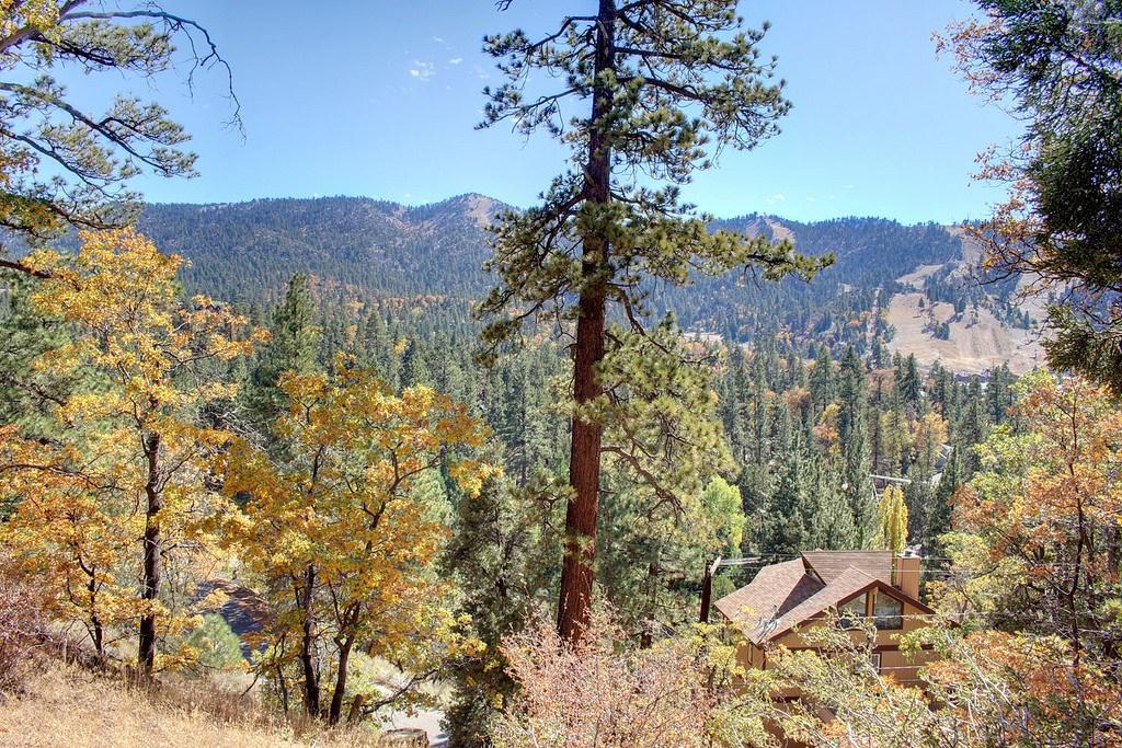 867 Menlo Drive Big Bear, CA 92315 - MLS #: PW17227432