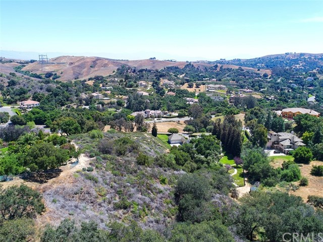 15878 Esquilime Drive, Chino Hills CA: http://media.crmls.org/medias/53c56b64-cfc5-4a7a-afd0-d461863b2e1e.jpg