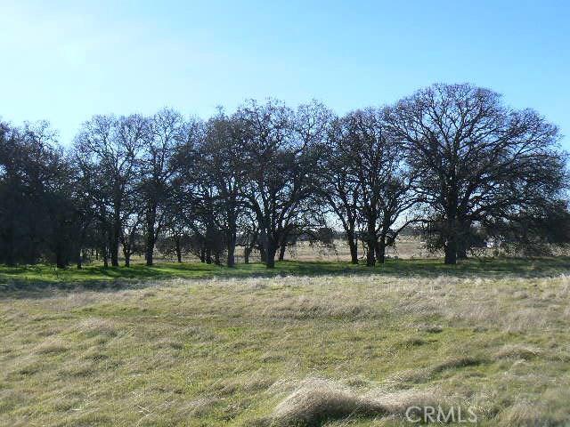 0 Cox Lane, Oroville CA: http://media.crmls.org/medias/5423492e-c85b-4a14-b166-5b7e670cb001.jpg