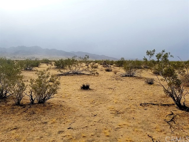 0 Desert Trail Drive Joshua Tree, CA 92252 - MLS #: EV18097035