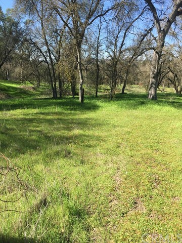 Additional photo for property listing at 0 400 Road Coarsegold, California United States