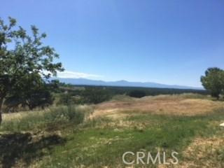 19825 Deer Valley Road Red Bluff, CA 96080 - MLS #: SN18103721