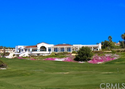 9 Monaco, Dana Point CA: http://media.crmls.org/medias/5650fbc7-ed50-4199-be13-398e0c9bc906.jpg