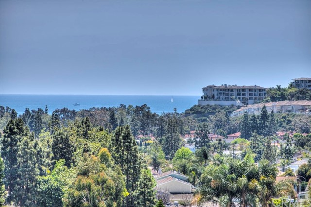 32761 Ocean Vista Court Dana Point, CA 92629 - MLS #: OC18090235