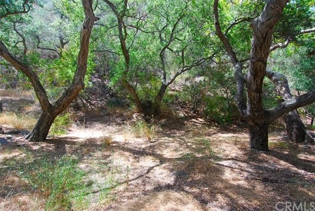28552   Silverado Canyon Road   , CA 92676 is listed for sale as MLS Listing OC15168980