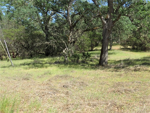 18640 Diamond Ridge Road, Lower Lake CA: http://media.crmls.org/medias/58fb0070-d74f-46d5-997d-1f88b3109b90.jpg