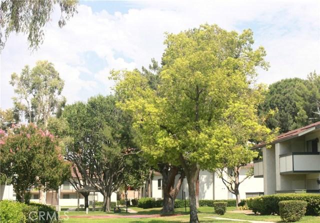 26200 Redlands Boulevard, Loma Linda CA: http://media.crmls.org/medias/5a3575ca-ab48-415c-b46d-dbaddf959f5b.jpg