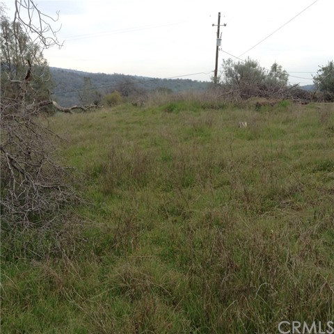 Additional photo for property listing at 0 Tioga Drive  Coarsegold, California 93614 United States