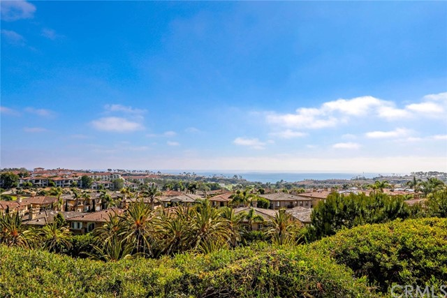 6 Corniche Drive # B Dana Point, CA 92629 - MLS #: OC17137502