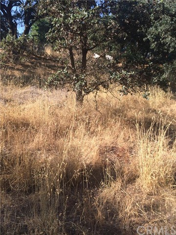 Additional photo for property listing at 850 Adams Street  Lakeport, California 95453 United States