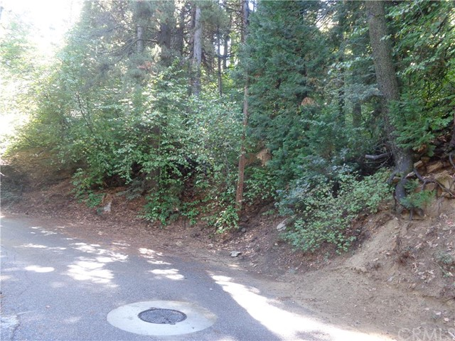 Additional photo for property listing at 1429 Community Drive  Lake Arrowhead, California 92352 United States