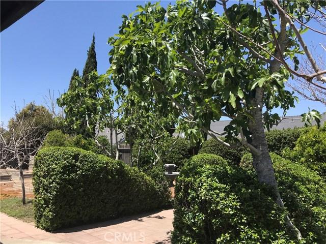 349 Wilson Drive, Santa Maria CA: http://media.crmls.org/medias/5c485b30-d8af-44a8-a87b-103c7eab8a61.jpg