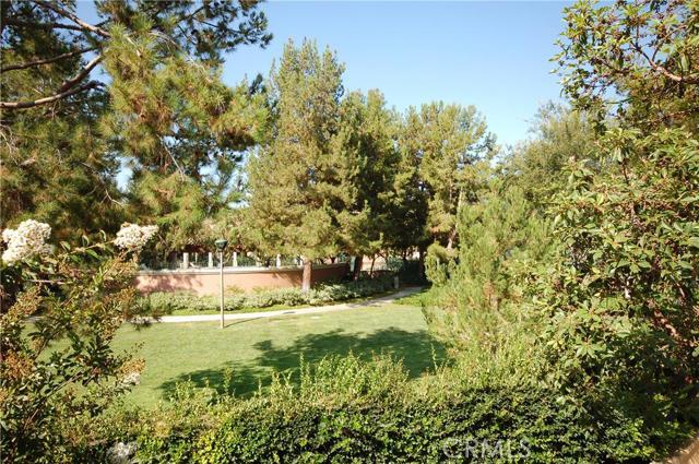910 Reggio Aisle, Irvine, CA 92606 Photo 8